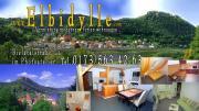 WWW.Elbidylle.com