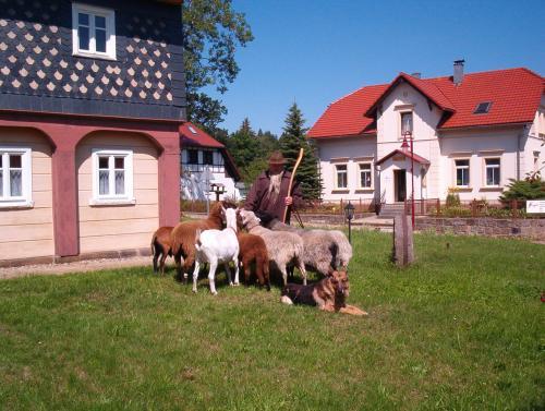 Tourist-Information mit Schäfer JonasDer Sage nach hat Schäfer Jonas Jonsdorf gegründet