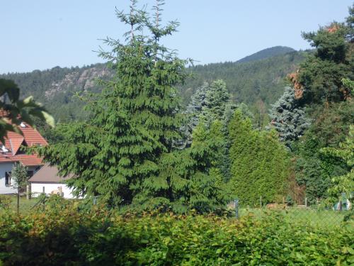 Blick vom Balkon auf Lausche und Nonnenfelsen